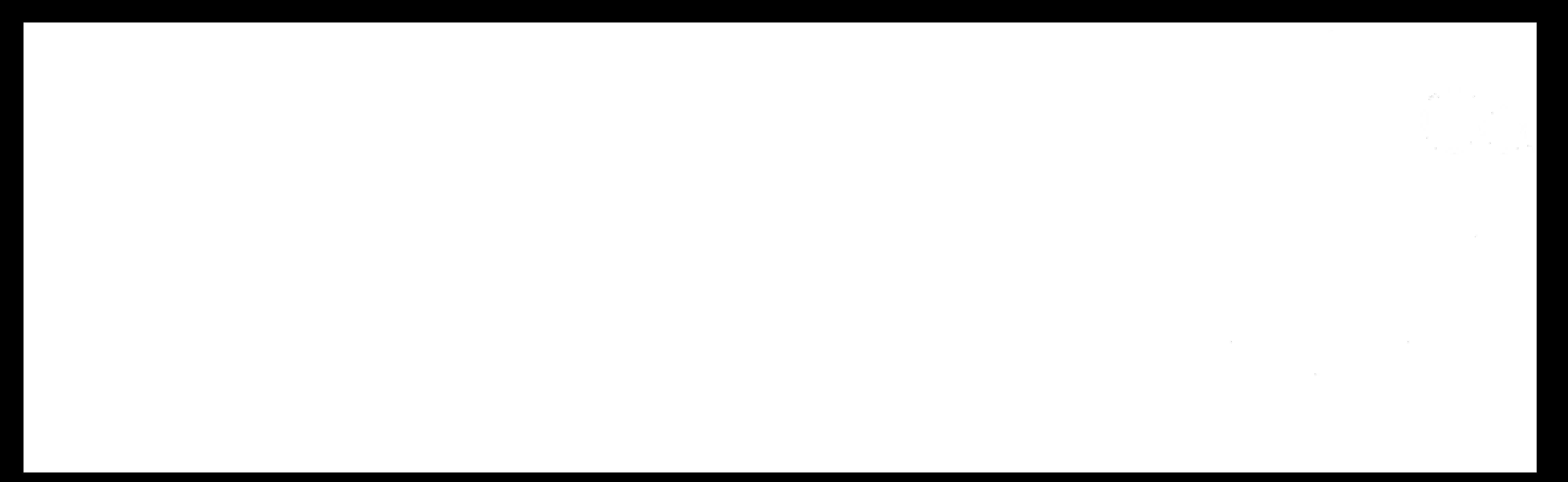 Holly Mack-Ward & Co.